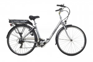 e-bike model E-Touring Geobike